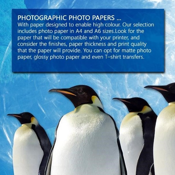 PAPER: PHOTO - A4 (50) MATT